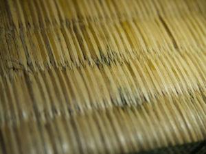 カビの生えた畳